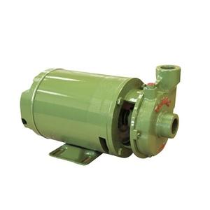 MOTOBOMBA FSG-S 1,5CV MONOFASICA